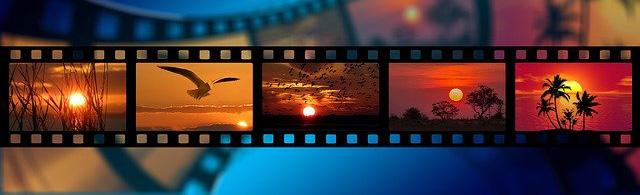 Sauvegarder photos et vidéos sur Android